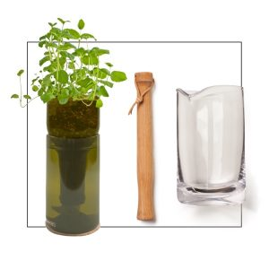 Mojito cocktail mint growing kit
