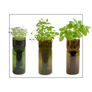 Indoor herb garden growing kit gift